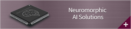 Neuromorphic AI Solutions
